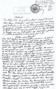Declaratie Ion Pitigoi