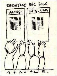 capsunari