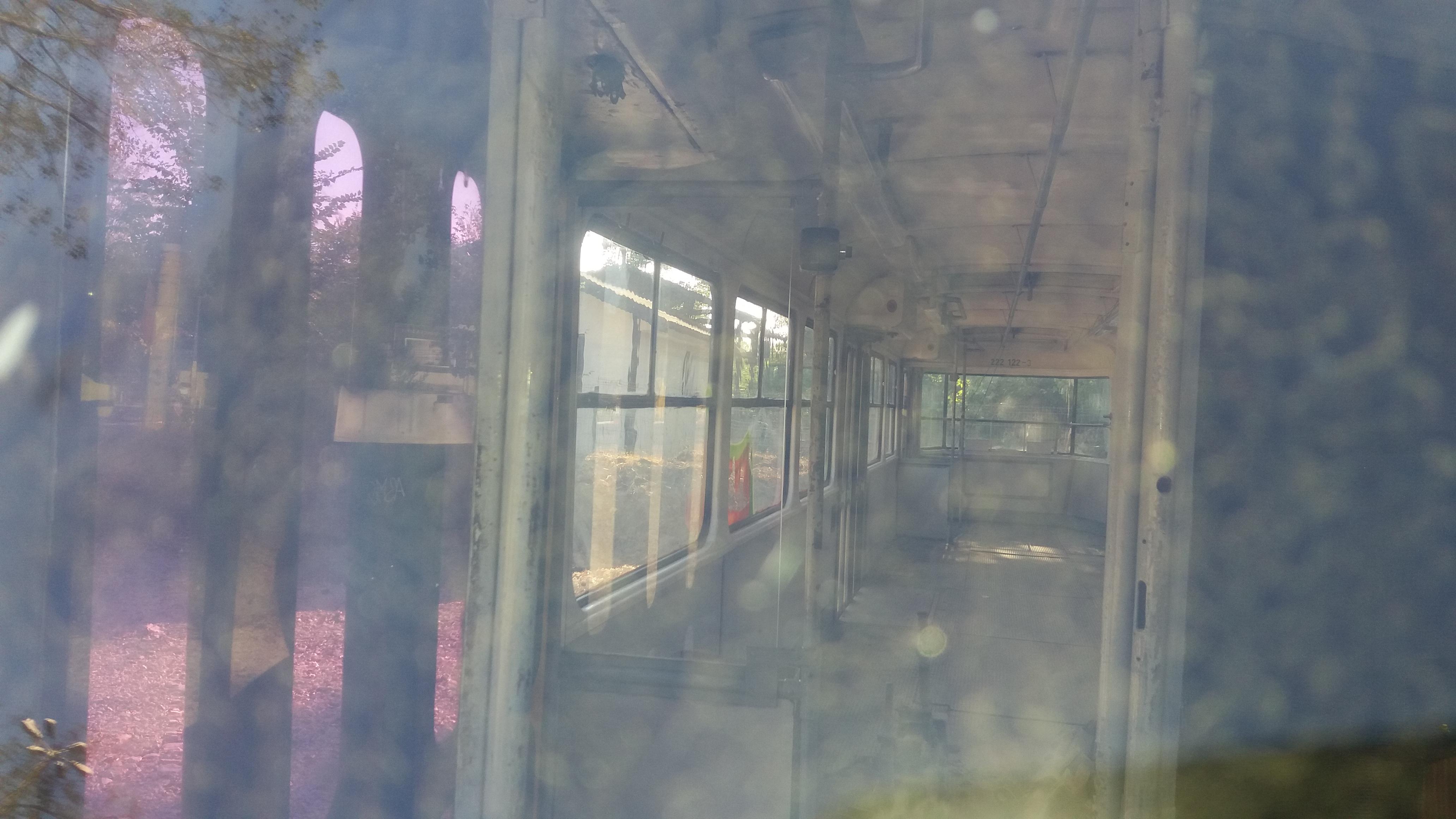 Imagine din interiorul tramvaiului.