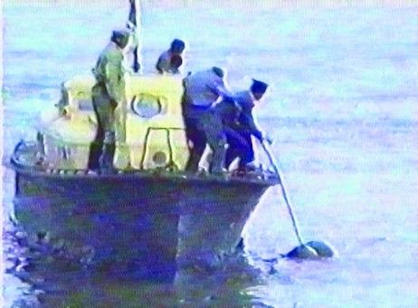 Pescuirea cadavrelor din apele Dunării.