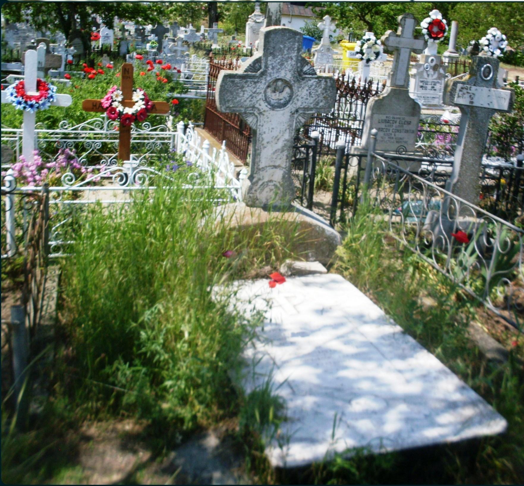 cimitir-colaj - Copy - Copy