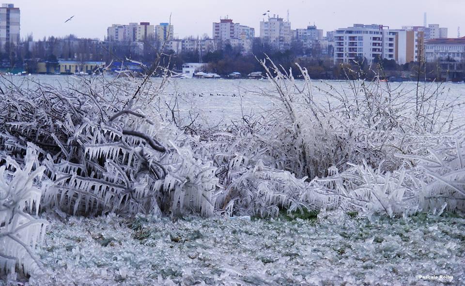 Constanța, februarie 2014.