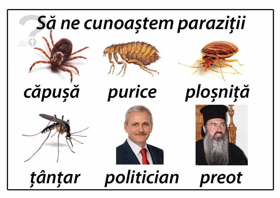 Teodosie parazit
