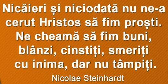 Citat-Nicolae-Steinhardt.fw_