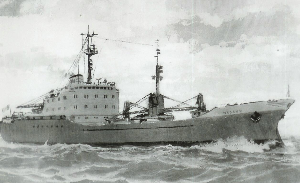 Cargoul NĂSĂUD (pictură), navă-soră cu cargoul DÎMBOVIȚA.