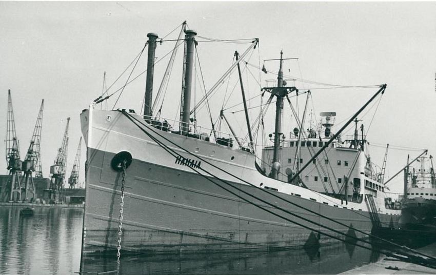 Cargoul MAMAIA