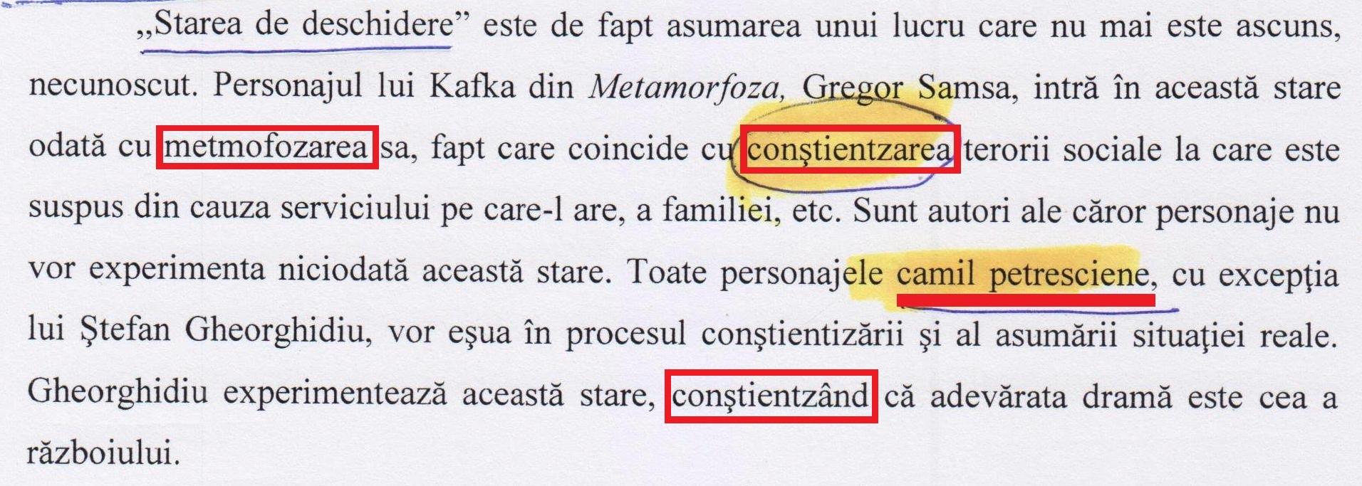 """Cum ar fi scris doctora Ciobotaru despre personajele autorului, dacă, printr-o """"metmofozare, Camil Petrescu ar fi devenit Ion Creangă! (pag. 107)."""