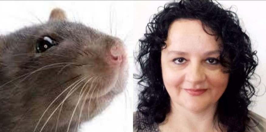 Fosta doamnă Petroșan, actuala domnișoară Mihaela Tudorache, fără copii, iubitoarea unui câine de talie mică (buldog francez).